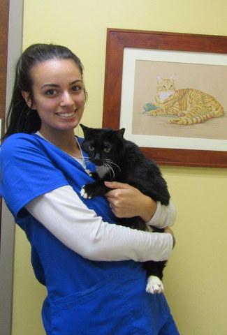 Dakota - Kennel Care at Companion Animal Hospital, Phenix City AL