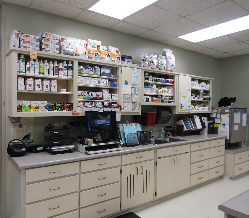 Veterinarian Pharmacy at Companion Animal Hospital in Phenix City, AL