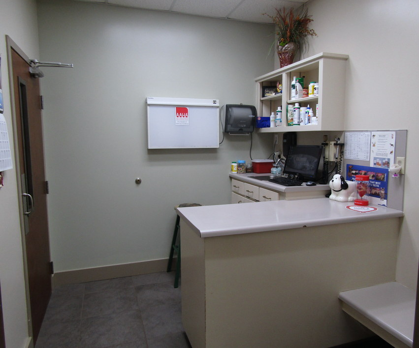 Dog Exam Room at Companion Animal Hospital in Phenix City, AL