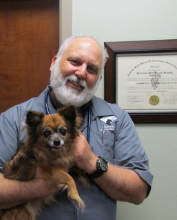 Our compassionate Veterinarian, Dr. Milenkovitch, Companion Animal Hospital in Phenix City, AL
